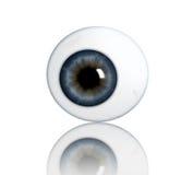 眼珠 向量例证