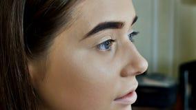 眼眉关心 妇女美丽的蓝眼睛,完善的形状的眉头,有专业构成的长的睫毛特写镜头和 库存照片