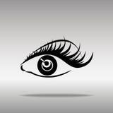 眼眉和眼睛黑剪影在白色背景 开放和闭合的眼睛 库存图片