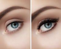 眼眉和extremly长的睫毛完善的形状  时尚宏观射击注视脸 För och after 免版税图库摄影