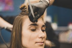 眼眉洗染 大师绘有无刺指甲花的眼眉给美女,绘与在美容师构成的沙龙的一把刷子 库存照片