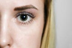 眼眉的永久构成和更正 库存照片