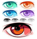 眼睛向量 库存照片