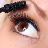 眼睛和染睫毛油刷子。美丽的妇女褐色眼睛 免版税库存图片