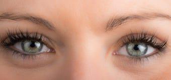 眼睛和长的睫毛 免版税图库摄影