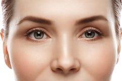 眼睛妇女眼眉注视鞭子 库存图片