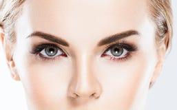 眼睛妇女眼眉注视鞭子 免版税库存图片