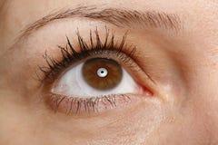 眼睛宏指令 库存照片