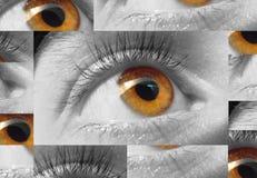 眼睛宏指令 库存图片