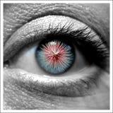 眼睛工作 免版税库存图片