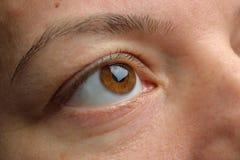 眼睛接近-看棕色的眼睛斜向一边 棕色fem特写镜头  库存图片