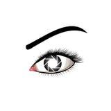 眼睛摄影商标 图库摄影