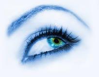 眼睛方式 库存图片
