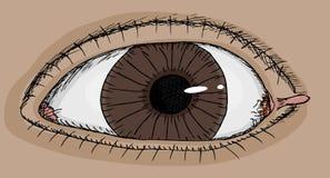 眼睛标签 皇族释放例证