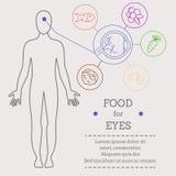 眼睛的食物 向量例证