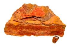 眼睛矿物自然优美的标本老虎 库存照片
