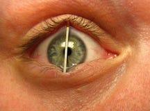 眼睛符合 免版税库存照片