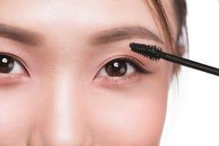 眼睛组成申请 染睫毛油刷子 美丽的亚洲人w画象  免版税库存图片