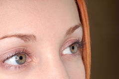 眼睛绿色 免版税库存图片