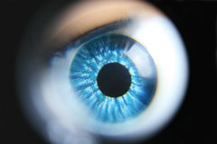 眼睛被扩大化的塑料 免版税库存照片