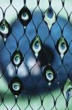 眼睛被折射的水 库存图片