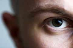 眼睛锐利 库存照片