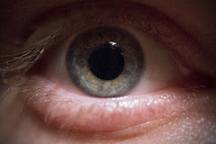 眼睛:蓝色/绿色 免版税库存图片