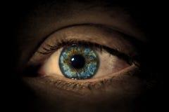 眼睛1 免版税库存照片