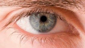 眼睛 股票视频