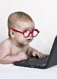 戴眼镜的滑稽的孩子看膝上型计算机显示 免版税库存图片
