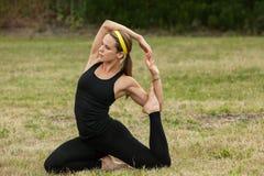 眼镜蛇室外公园射击体育运动主题瑜伽 免版税库存图片