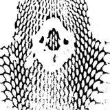 眼镜蛇顶头蛇皮摘要纹理 黑色 向量例证