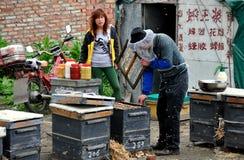 彭州,中国: 做蜂蜜的蜂农 库存照片