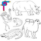 着色图象野生动物02 免版税图库摄影