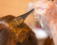 着色头发秀丽惯例有自然无刺指甲花的 免版税图库摄影