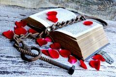 着迷的老爱情小说1763 免版税库存图片