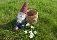 睡着的庭院地精坐有雏菊的一个绿色草甸并且倾斜反对篮子 免版税库存图片
