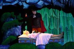 睡美人和王子 免版税库存照片