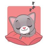 睡觉在一个红色枕头的逗人喜爱的灰色猫 库存图片