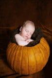 睡觉在南瓜的婴儿 免版税库存照片