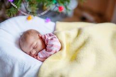 睡觉在圣诞树附近的一个星期的新出生的女婴 免版税库存图片