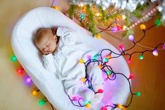 睡觉在圣诞树附近的一个星期的新出生的女婴 库存图片