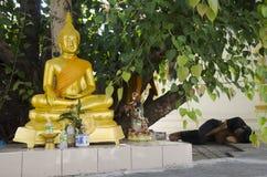 睡觉在地板上的泰国地痞人民在与菩萨雕象的榕属religiosa下 库存照片