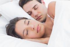 睡觉在她的伙伴旁边的一名可爱的妇女的画象 免版税库存照片