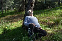 睡觉在树下的人 库存图片