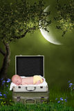 睡觉在树下的婴孩 库存图片