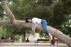 睡觉在树的俏丽的妇女在工作和有以后麻烦睡觉 免版税图库摄影