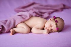 睡觉在桃红色背景的新出生的女婴 免版税库存照片