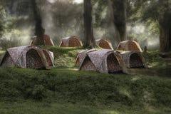睡觉在森林里的帐篷在黎明 免版税库存照片