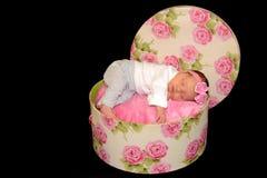 睡觉在玫瑰的新出生的婴孩开花了帽子箱子 免版税库存图片